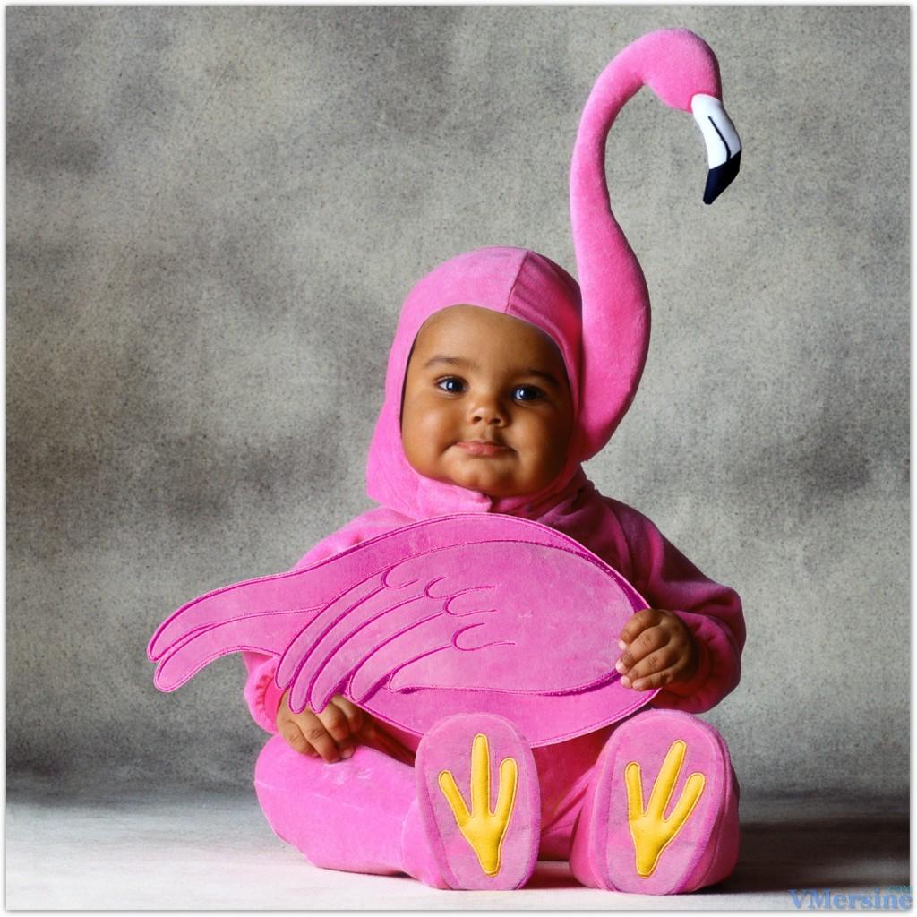 Ver fotos de disfraces para bebes 95