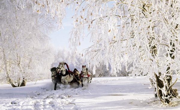 Смотреть фильмы онлайн счастливые люди осень зима весна лето